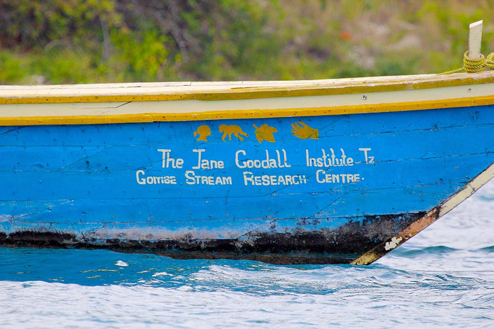 GOMBE STREAM NATIONAL PARK, TANZANIA - JUNE 13: a boat of the Jane Goodall Institute on June 13, 2013 in Gombe Stream National Park. This organization aims to protect the great apes and their habitats